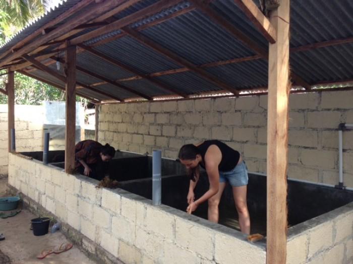 building renovation2