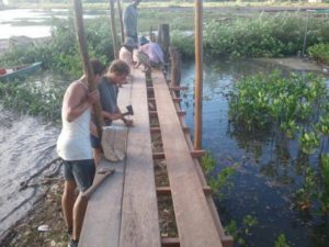 bridgewalk over mangroves with volunteering conservation