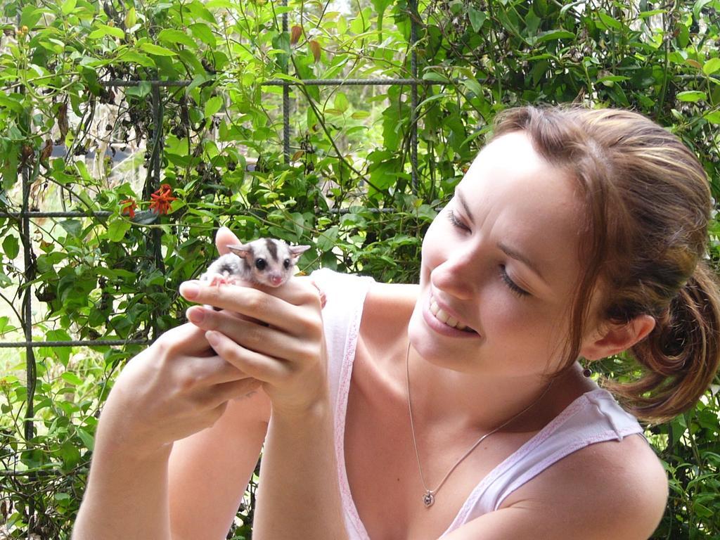 animal and girl