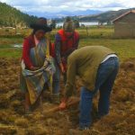 Review of Indigenous Community Project Peru