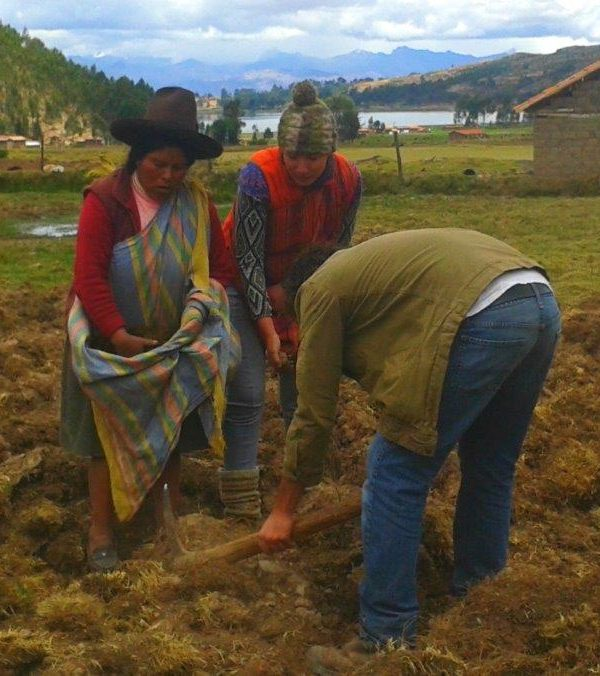 dsc 9938829 600x676 - Review of Indigenous Community Project Peru