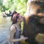 Elephant Conservation Adventure
