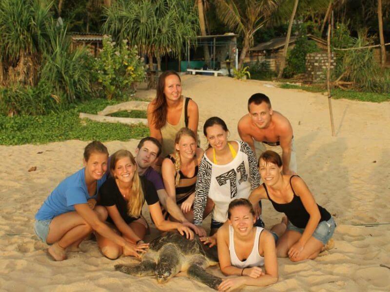 Srilanka turtle conservation 8 800x600 - Sri Lanka