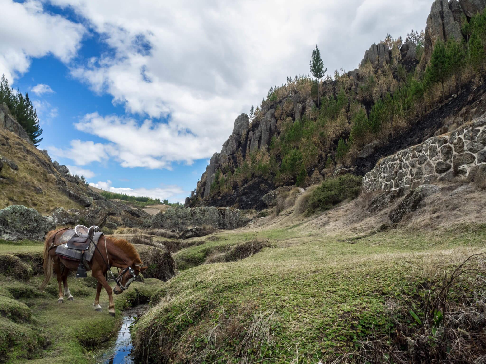 rolling hills in peru