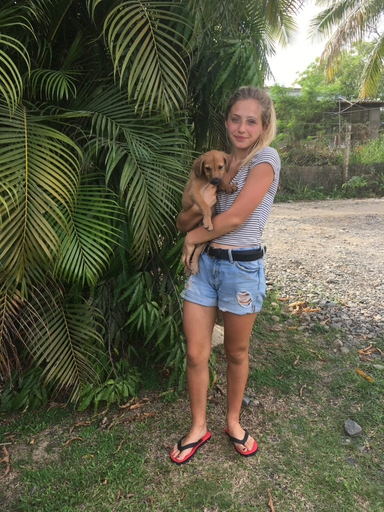 dani stubbs3 768x1024 - Veterinary Care Volunteer Review Fiji