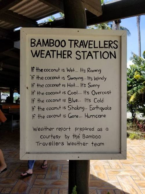 bamboo travelers fiji - 7 Signs You Need to Volunteer Abroad