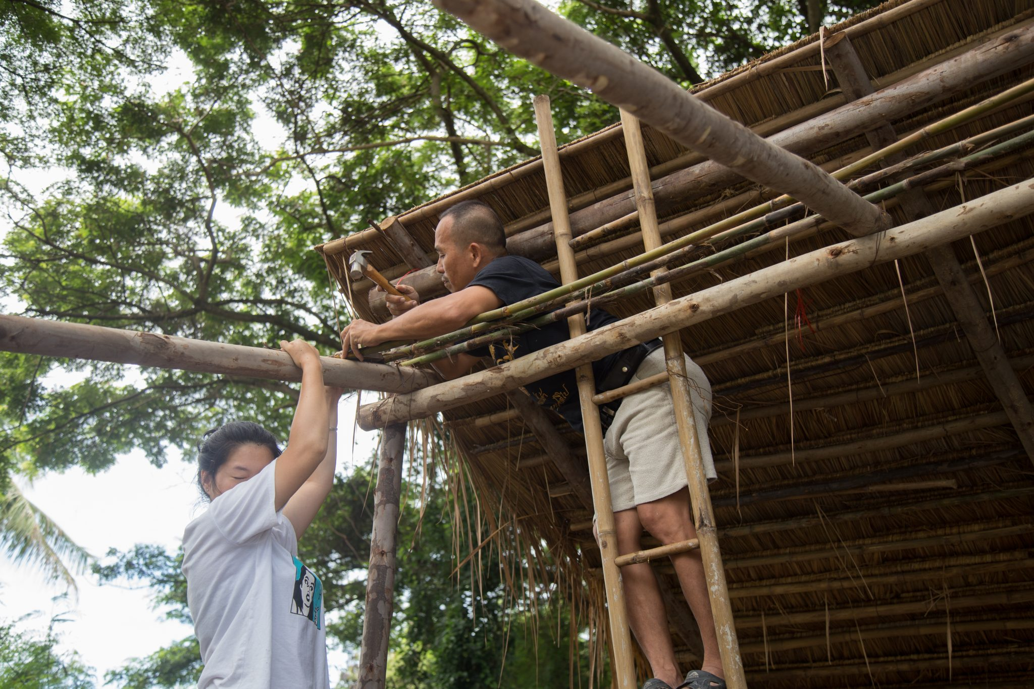 Creating bamboo roof