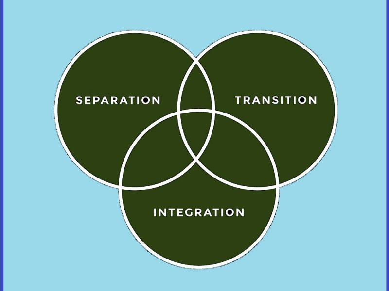 seperation transition integration5 800x600 - Group Volunteering for Teens