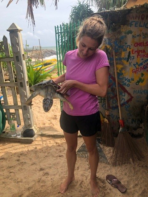 Heidi volunteer with a cute turtle e1565336296879 - Childcare and Construction Volunteering Sri Lanka