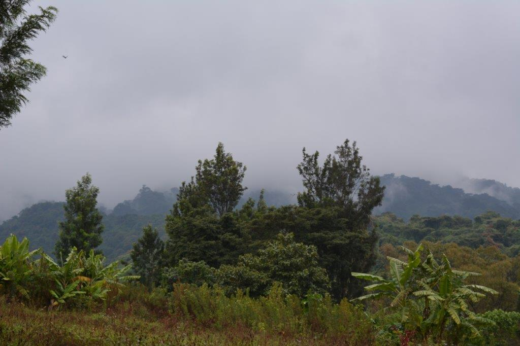 Iringa and Ruaha National Park