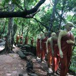 Cultural Orientation Week Sri Lanka