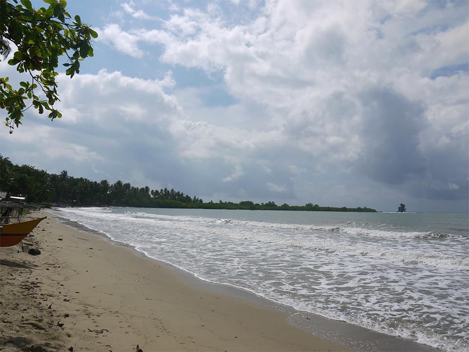 Philippines hosts IVI 2 - Meet your hosts in Palawan, Philippines