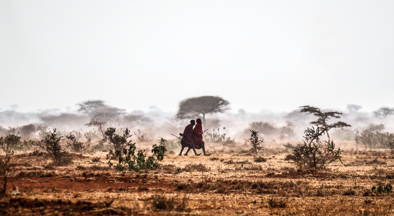 Maasai men walking the farmland