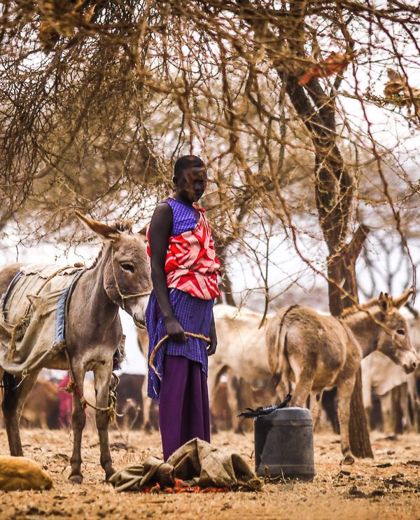 Maasai woman with donkey