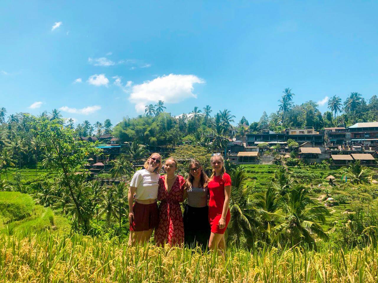 group in Bali rice fields