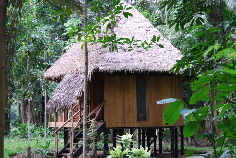 jungle accommodation hut