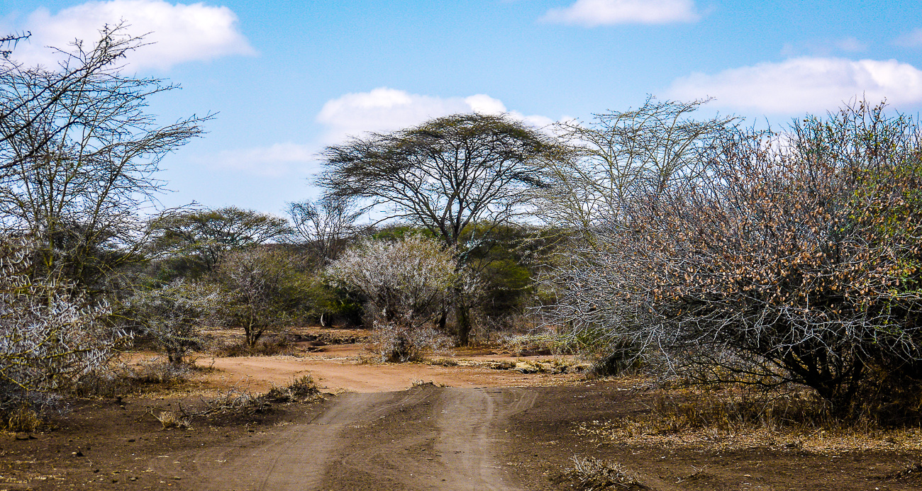 local land in Tanzania