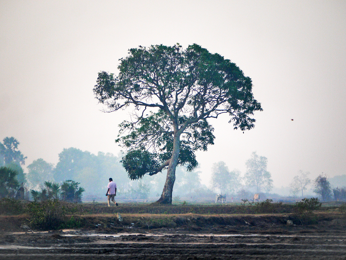 man by tree in rural Cambodia