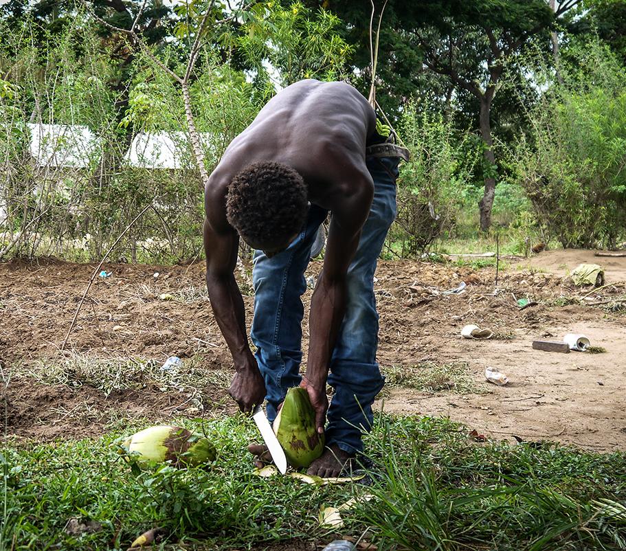 man cutting coconut