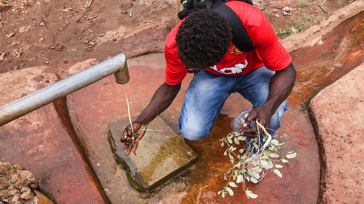 man washing plants under tap