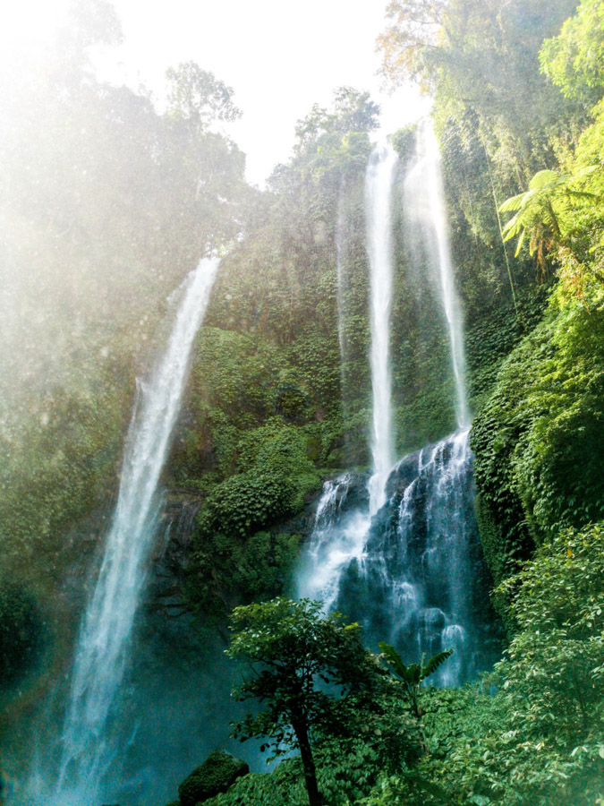 waterfall surrounded by green trees-2