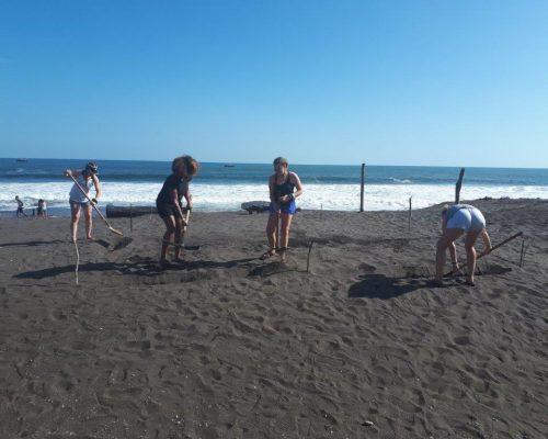 raking the beach