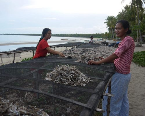adventure volunteering week in the islands palawan