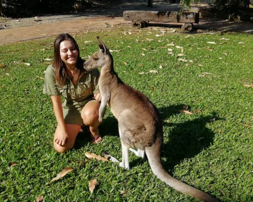 Australian zoo volunteering (2)