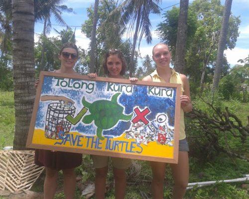 Bali turtle3