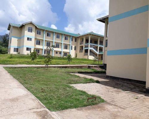 Tanzanian local hospital
