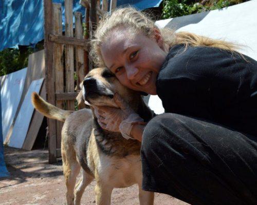 Dog Rehabilitation Peru (2)