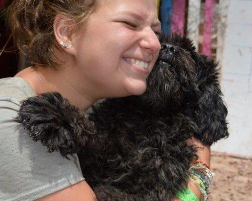 Dog Rehabilitation Peru (5)