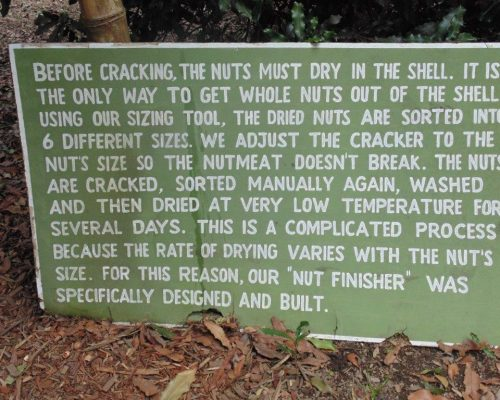 sign saying how to crack the nuts