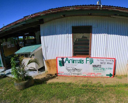 Fiji animal shelter