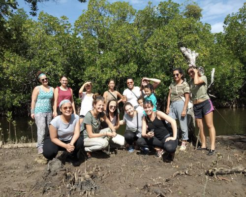 group by mangroves