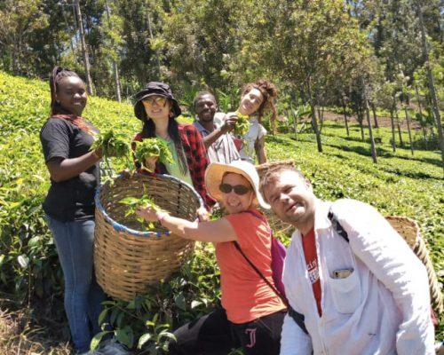 Group photo at tea farm