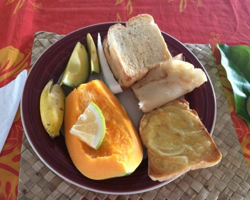 nutrition program in samoa for dieticians and nutritionists