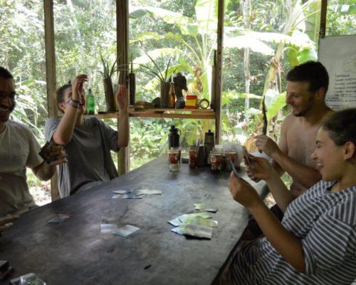 Jungle conservation (3)