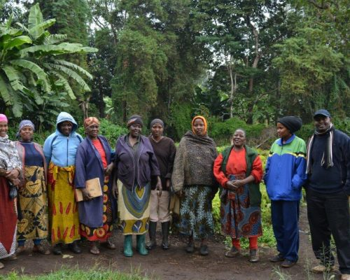 Tanzanian farmers lined up for photo