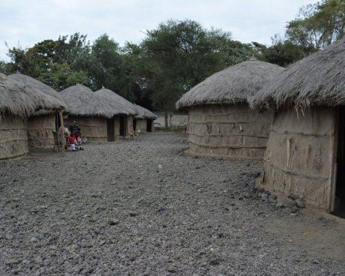 Maasai museum
