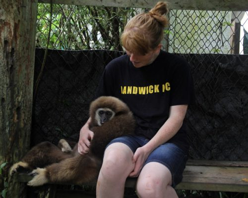 Participant with George (disabled gibbon)