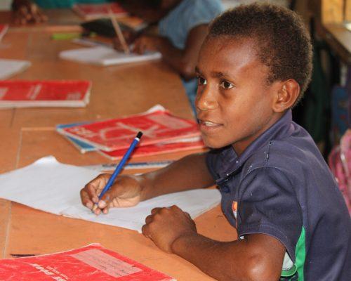 Primary school child learning in vanuatu