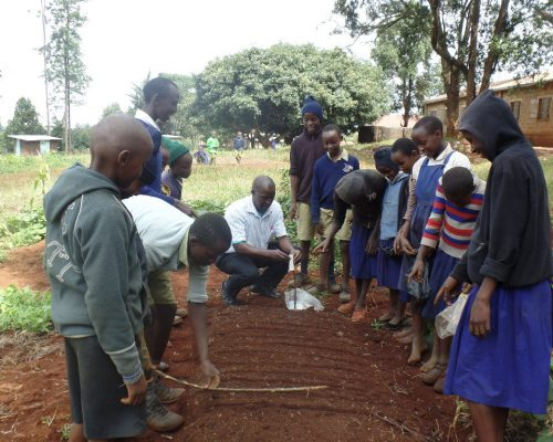 Setting up a school garden at kamunyaka school