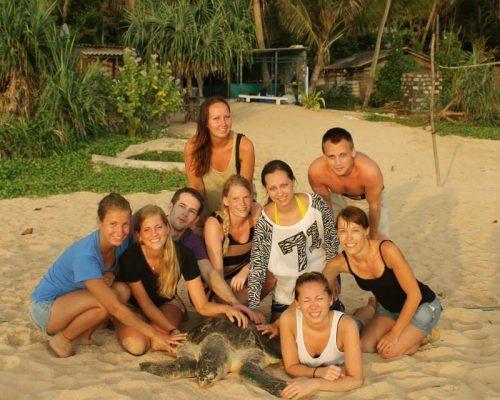 Srilanka turtle conservation (8)