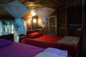 elephant center accommodation