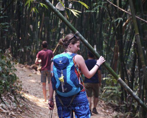 _Trekking in the jungle to waterfall