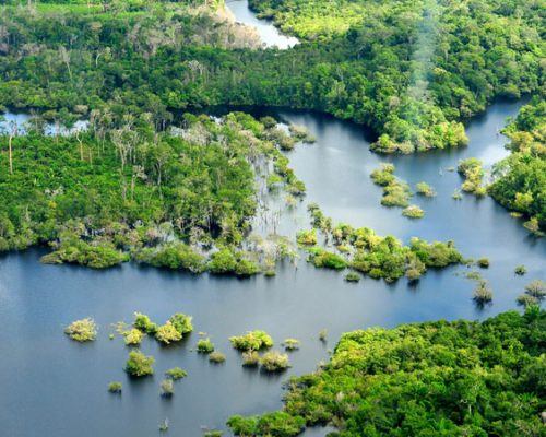 amazon jungle shot with beautiful river mouth and green forests dotted throughout