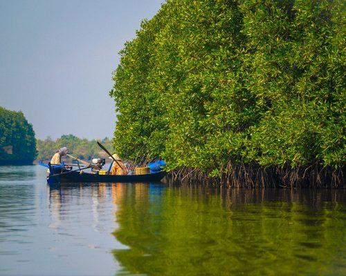 boat on river in Kampot