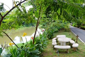 outlook to the garden in Singburi Thailand