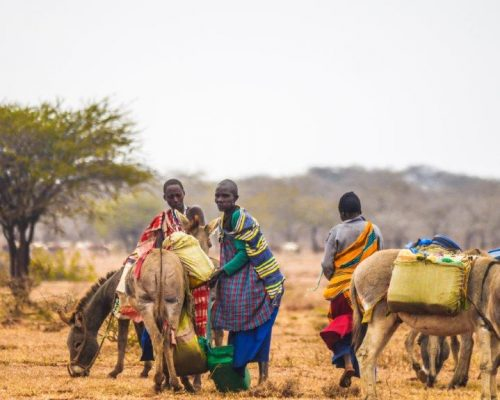 local Maasai men on farmland, Tanzania